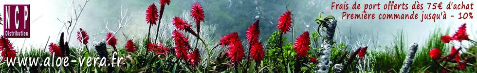Aloe vera, aloe ferox, acaï, noni, graviola, goji, silicium