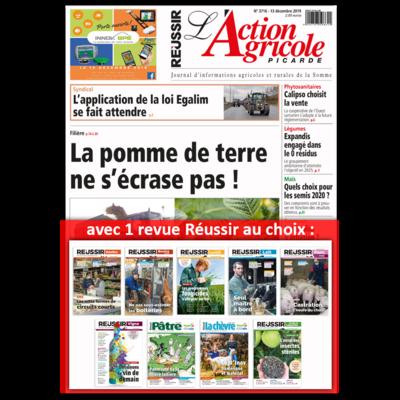 Journal (papier + web) avec 1 revue Réussir