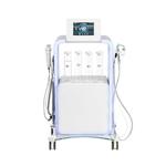 Colonne multifonctions 5 en 1 avec fonction Aqua Clean, LIKA