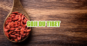 baies de goji du Tibet