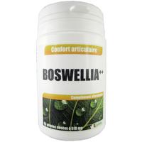 Boswellia ++ extrait gélules 510 mg