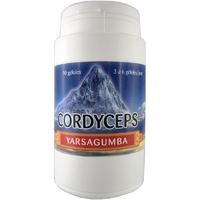 Cordyceps 90 gélules 230 mg