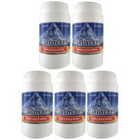 Cordyceps 90 gélules végétales - Maxi pack x 5