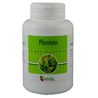 Plantain 200 gélules 250 mg