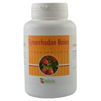 Cynorrhodon baie 200 gélules 250 mg
