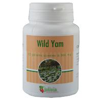 Extrait de Yam 80 gélules 300 mg