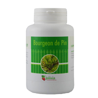 Bourgeon de pin 200 gélules 200 mg