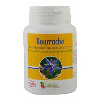 Bourrache Bio huile 100 capsules