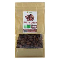 Fèves de cacao crues Bio AB non torréfiées 500 g