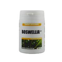 Boswellia ++ extrait gélules 250 mg