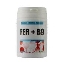 Fer + B9 gélules 14 mg