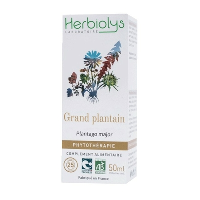 Herbiolys_Phyto_Grand_plantain