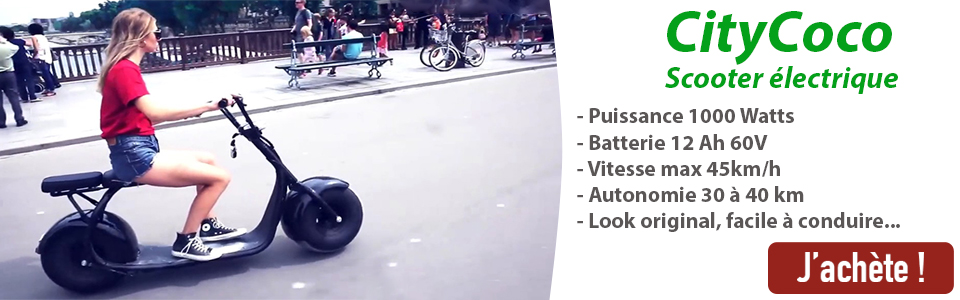 Scooter trottinette électrique type Harley