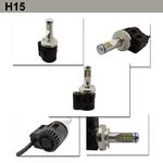 H15 (2)