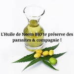 nature_shampoing_pour_chien_noala2