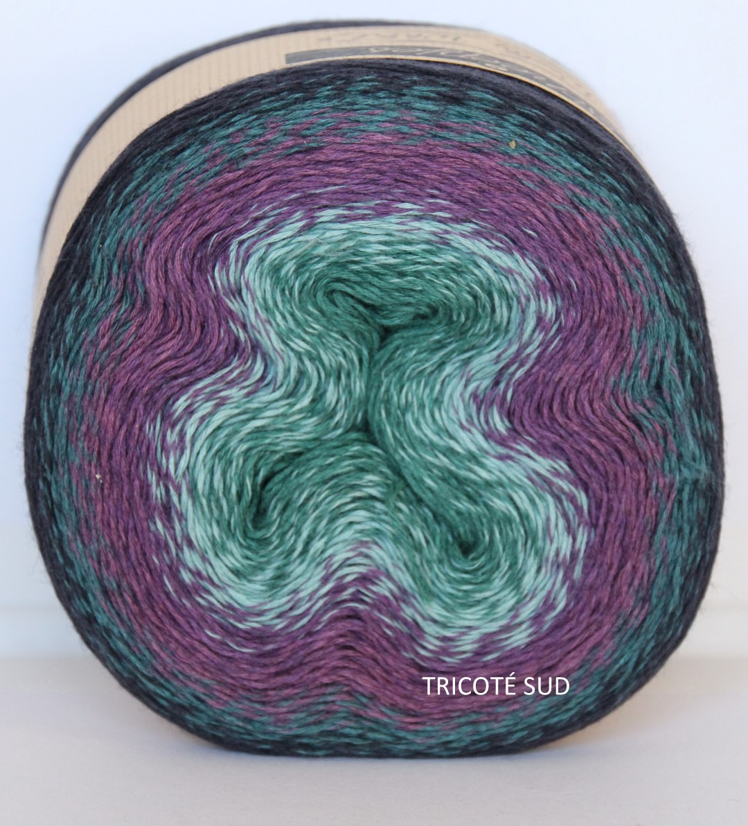 WOOLY WHIRL COLORIS 472 (1) (Large)