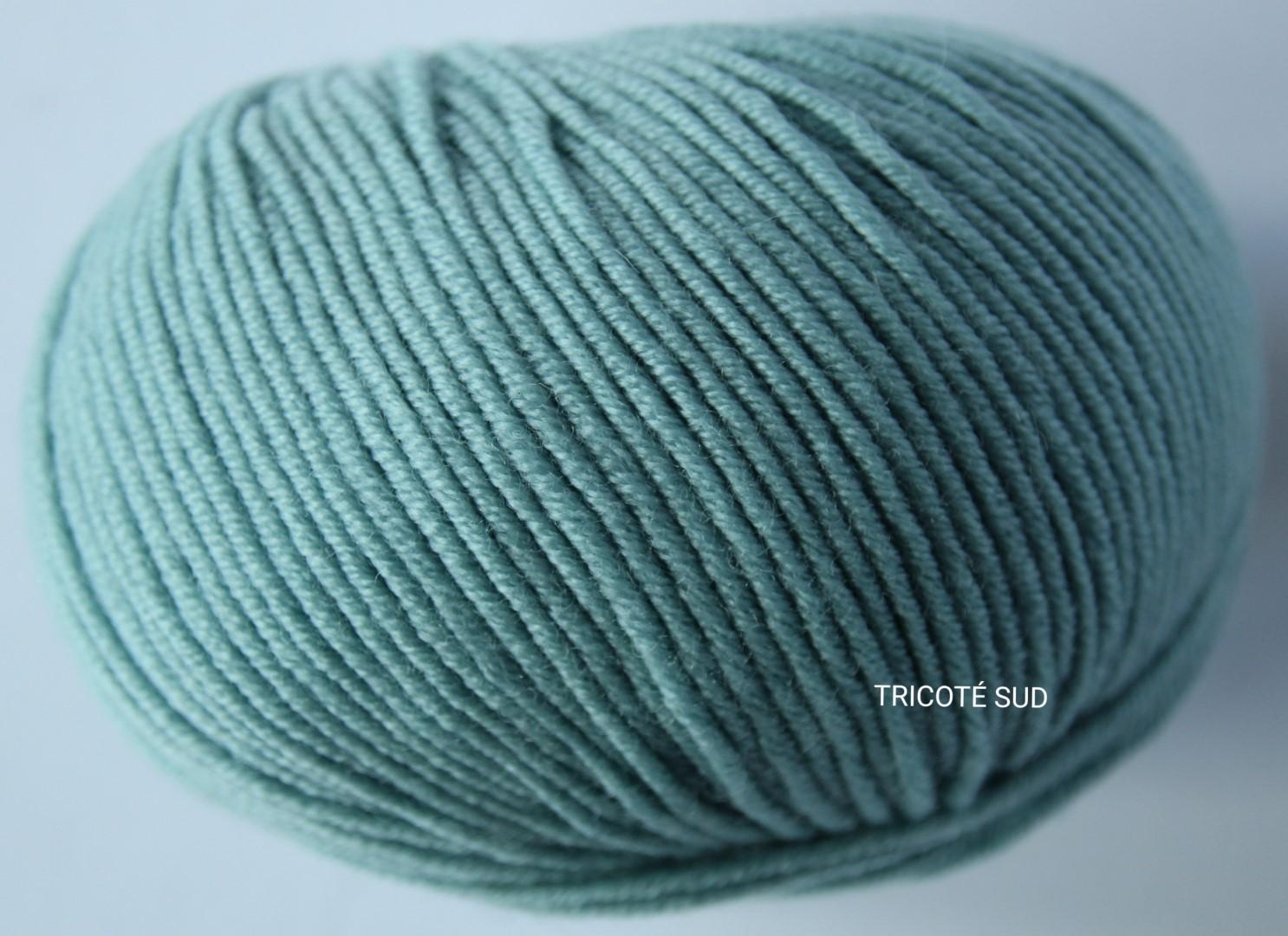 MERINO 120 COLORIS 174 (2) (Large)