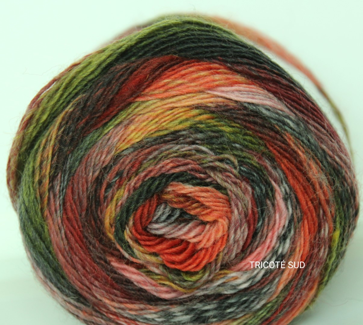 MILLE COLORI SOCKS AND LACE COLORIS 62(7) (Large)