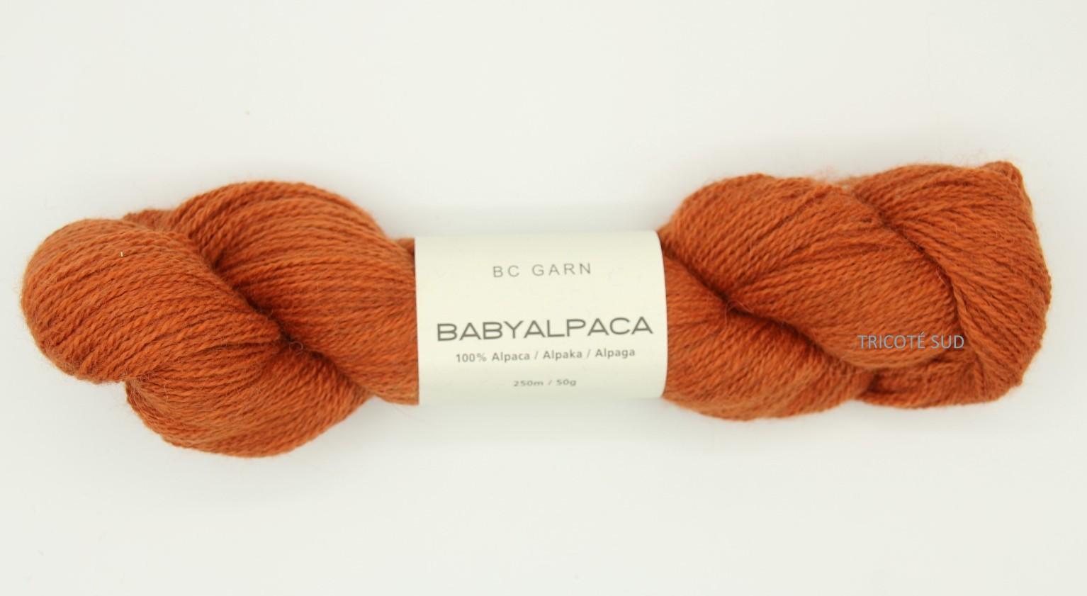BABY ALPACA BCGARN 38 (Large)