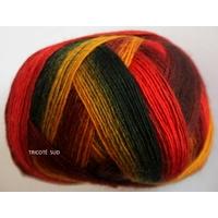 Jawoll Magic Dégradé coloris 60