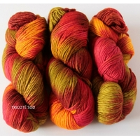 Worsted coloris Snow Bird