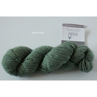 Acadia coloris Summer Sweet