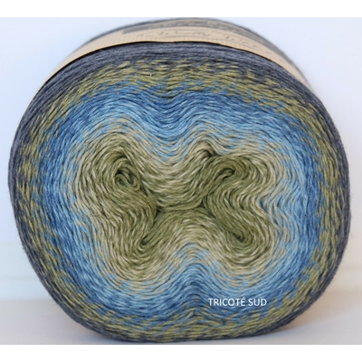 Wooly Whirl coloris 473
