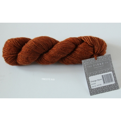 ACADIA FIBRE CO COLORIS ORANGE STORM (1) (Large)