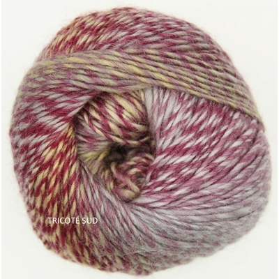Our Tribe coloris 961 Fifty shades of 4 Ply