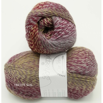 OUR TRIBE SCHEEPJES COLORIS 961 FIFTY SHADES OF 4 PLY (1) (Medium)