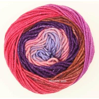 Merino 120 Dégradé coloris 04