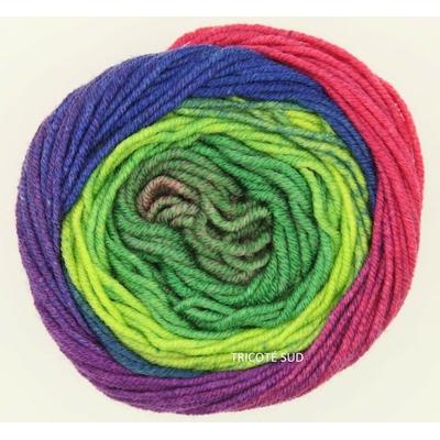 Merino 120 Dégradé coloris 08