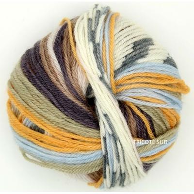 Knitcol coloris 74