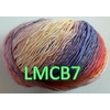 LMCB7 (2) - Copie (Large)