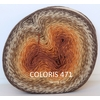 WOOLY WHIRL COLORIS 471 (1) (Large) - Copie
