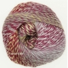OUR TRIBE SCHEEPJES COLORIS 961 FIFTY SHADES OF 4 PLY (2) (Medium)
