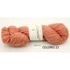 LOCH LOMOND BIO BC GARN COLORIS 22 (Medium)