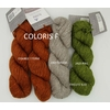 CAMELIA COL TRICOTE SUD COLORIS F (Medium)