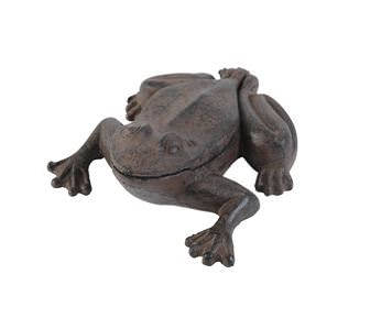 cache clés grenouille