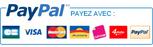 Bannière Paypal rectangulaire avec logos des cartes de crédit