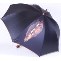 parapluie cheval