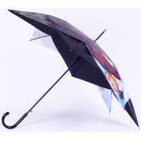 parapluie peintre03