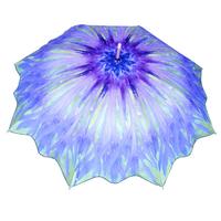 Parapluie Bleuet