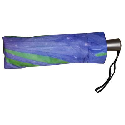parapluie-mini-automatique-bleuet001