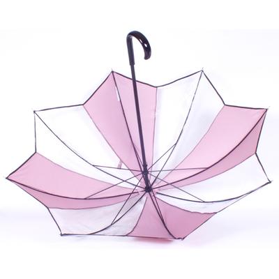 parapluie tulipe transparent05