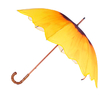 Parapluie Tournesol