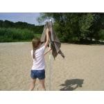 parasol de plage7