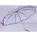 parapluie-journal2