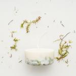 Munio Candela bougie 220ml parfumée naturel moss cire de soja
