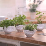 bols 500ml visage emotion cuisine herbes aromatiques dans vaisselle tassen